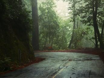 adventure_forest