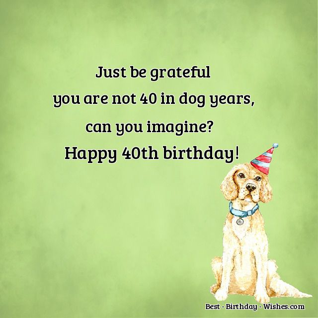 40th Birthday Wishes Funny Happy Messages Quotes for their 40th – Happy 40th Birthday Greetings