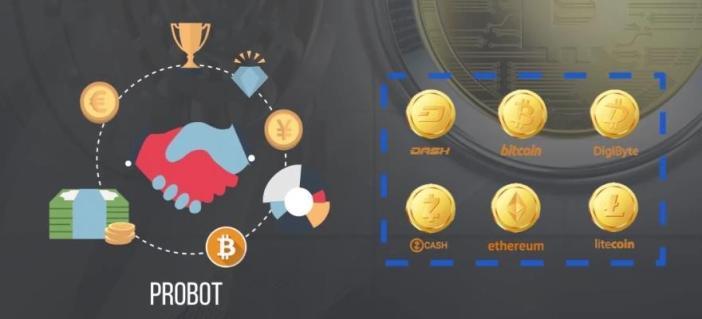 Project X Probot
