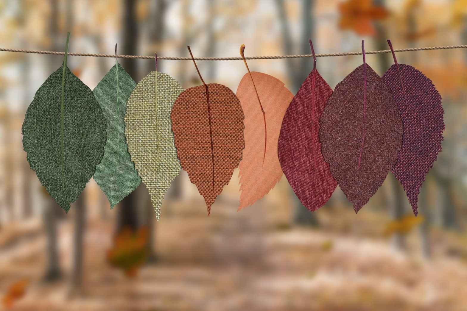 leaves hang on rope