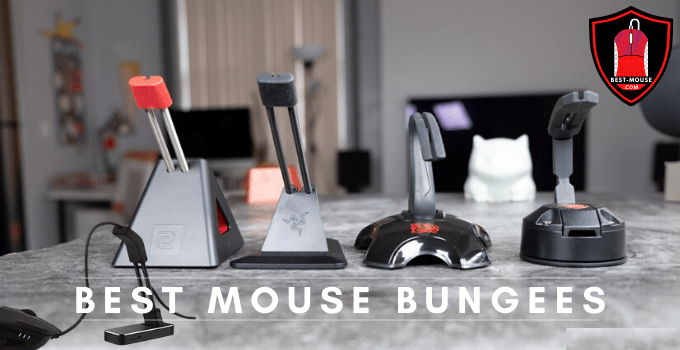 10 Best Mouse Bungee 2021 Buying Guide