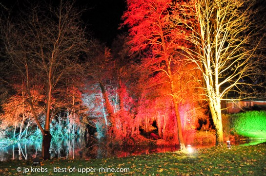 Christmas Trails in Osthouse Alsace 2012. Colorful woods.