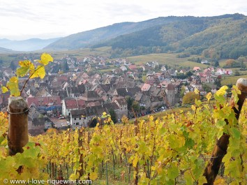 Riquewihr seen from the Schoenenbourg hill