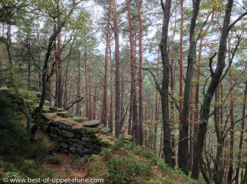 Old prehistoric defense wall near Ste Odile monastry