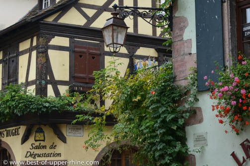 Riquewihr - colours of medieval houses.