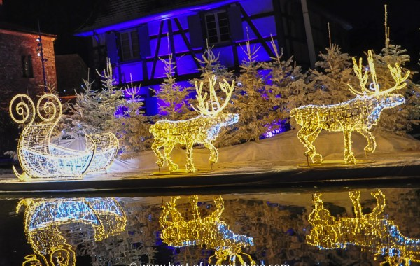 Merry Christmas wishes sent from the Upper Rhine valley