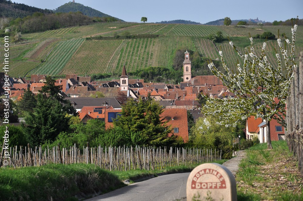 Riquewihr in the early Spring