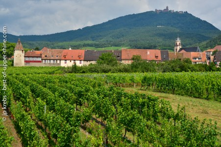 The village of Saint-Hippolyte and the Haut-Koenigsbourg castle