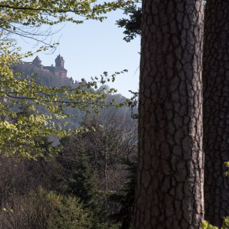 The dungeon of castle Haut-Koenigsbourg seen from mountain the road leading to Thannenkirch.