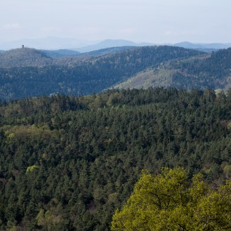 Mountains and forests south of Haut-Koenigsbourg castle.