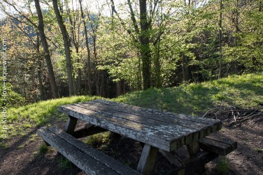 Picnic area on the way to the mountain.