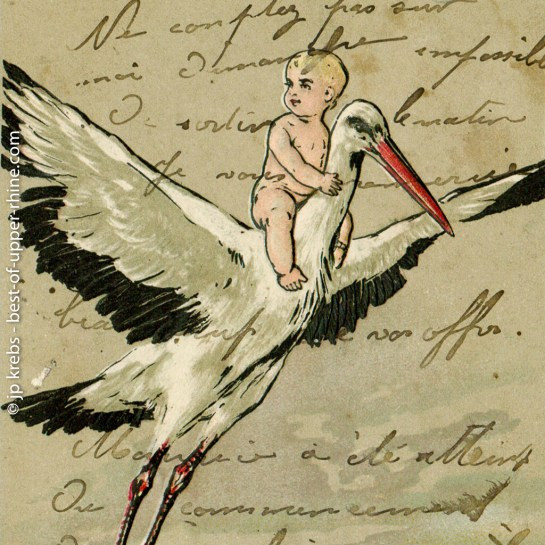 In Alsace, the stork has the task to bring the babies ...