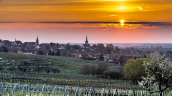 Mittelbergheim surrounded by the vineyards