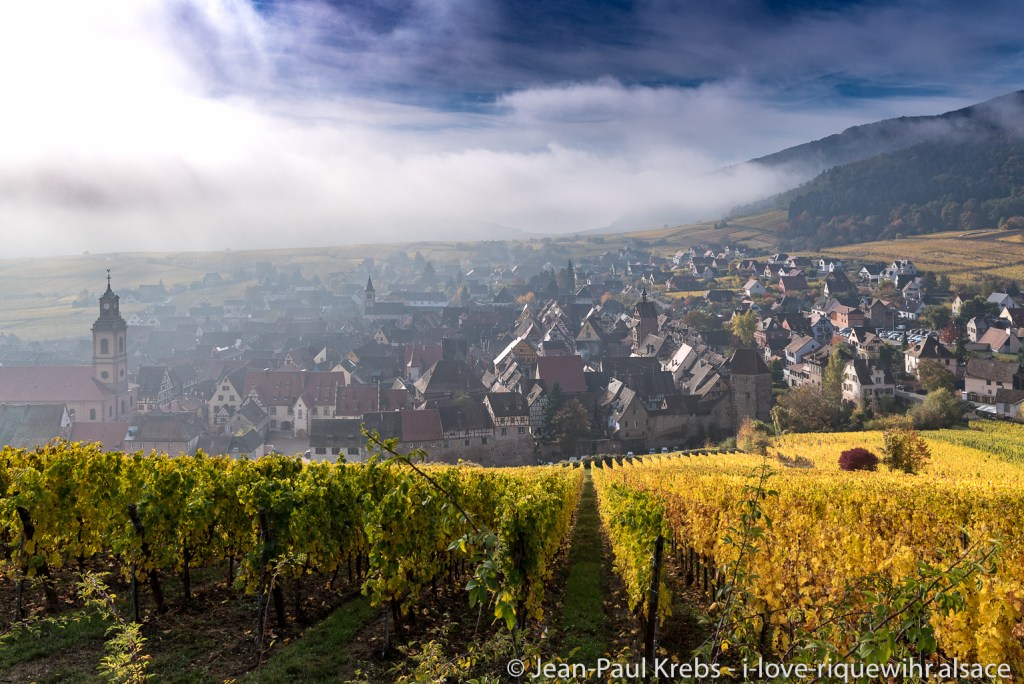 Riquewihr in a light autumn fog, seen from the vineyards of Schoenenbourg. Located in the center of the photo, on the medieval ramparts, our property with vacation rentals. The colors are cheerful even on a cloudy day.