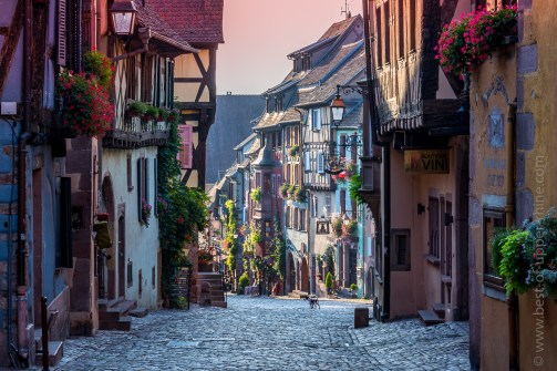 Riquewihr, Alsace, main street in the early morning.