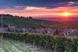 Riquewihr, Alsace - Sunrise in Summer