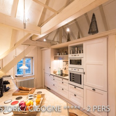The kitchen of the White Stork, spectacular and romantic loft apartment with terrace in Riquewihr in Alsace on the Alsace Wine Route!