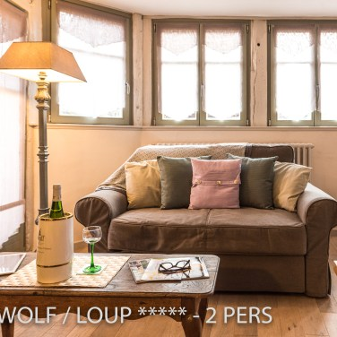 The main room of the The Little Wolf, lovely apartment in Riquewihr in Alsace for 2 persons just near the Schœnenbourg vineyard on the Alsace wine route
