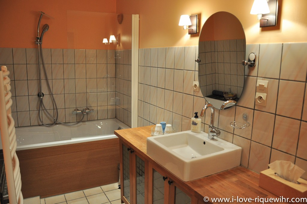 The bathroom of Riesling, beautiful and charming apartment for 2-4 adults is located in the medieval heart of Riquewihr in Riquewihr Alsace