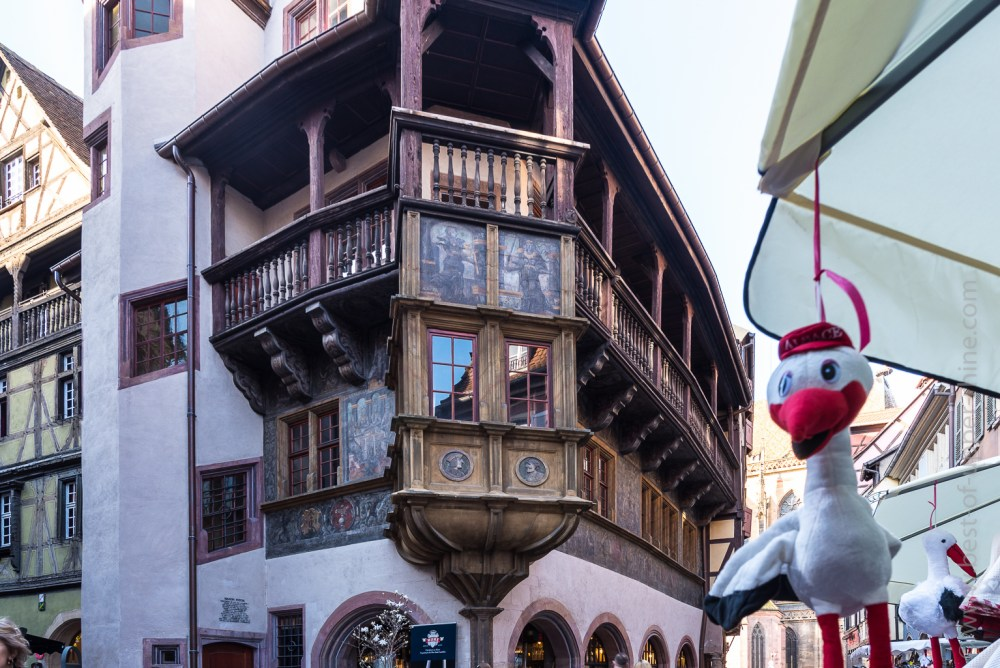 Spring stork in ambush in front of Pfister house in Colmar