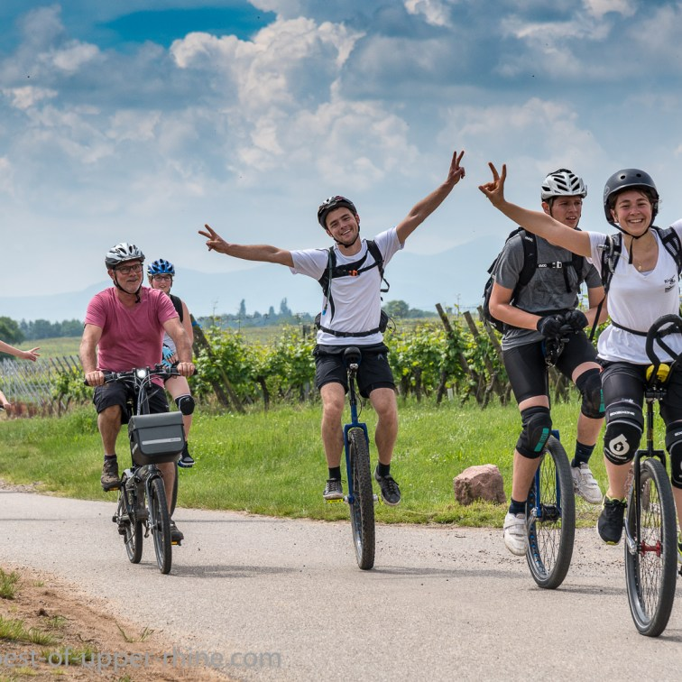 Slow Up Alsace. Without hands, on the Vineyard bike route.