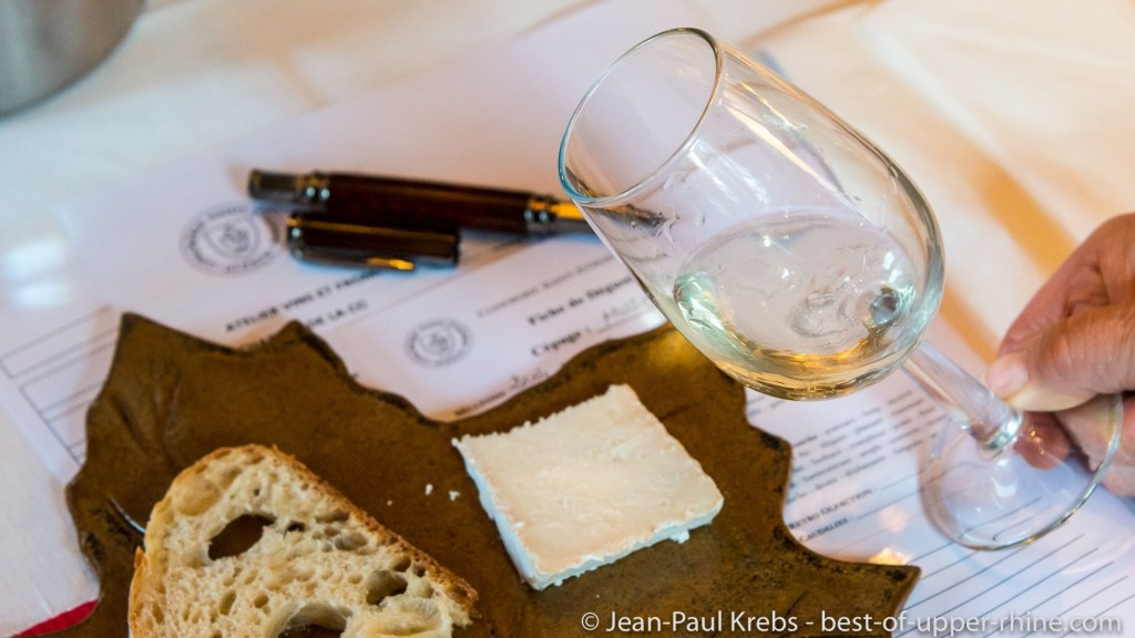 Alsace wines and cheese workshop with Jean-François Antony in brotherhood Saint-Etienne