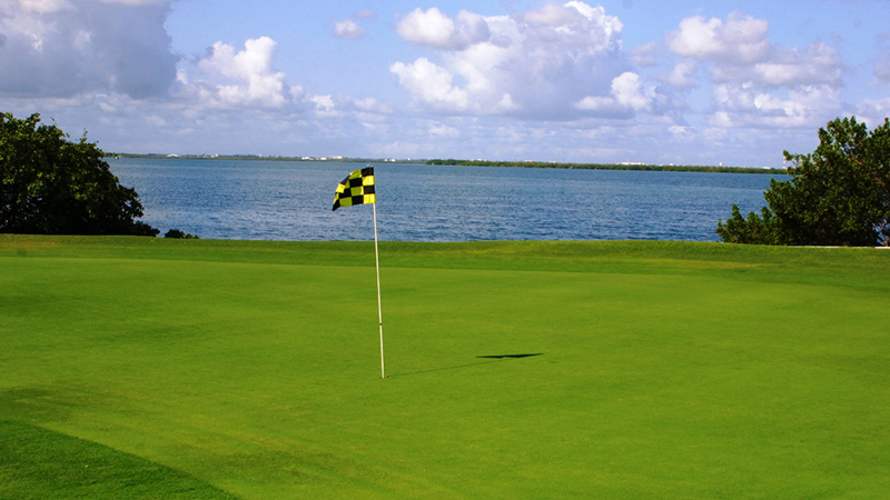best things to do in cancun mexico golf course
