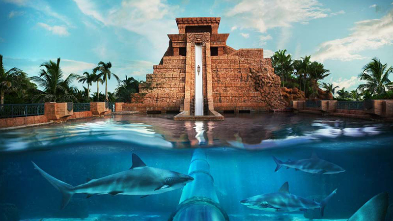 best reasons to stay at atlantis fun things to do