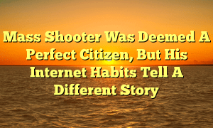 Mass Shooter Was Deemed A Perfect Citizen, But His Internet Habits Tell A Different Story