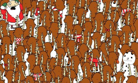 cover reindeer 1513628279156 - Can You Spot The Bear In A Horde Of Santa's Reindeer?