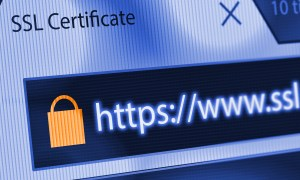 how SSL works - Security Alert! Don't Leave Your Site (Or Your Customers) Vulnerable