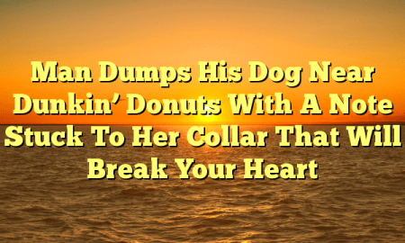 Man Dumps His Dog Near Dunkin' Donuts With A Note Stuck To Her Collar That Will Break Your Heart