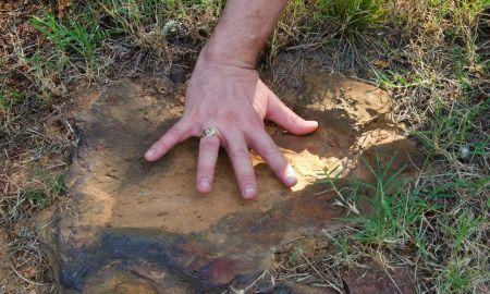 1517545877 incredible dinosaur road discovery mother lode of dino tracks found at nasa site - Incredible dinosaur 'road' discovery: 'Mother lode' of dino tracks found at NASA site