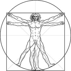 Da Vinci's Principle Of Proportion