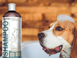 top 10 best dog shampoo brands