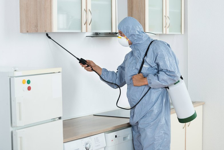 is pest control safe for humans
