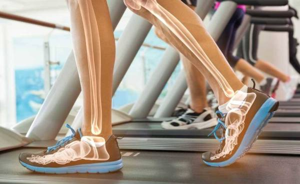 what muscles does the treadmill work