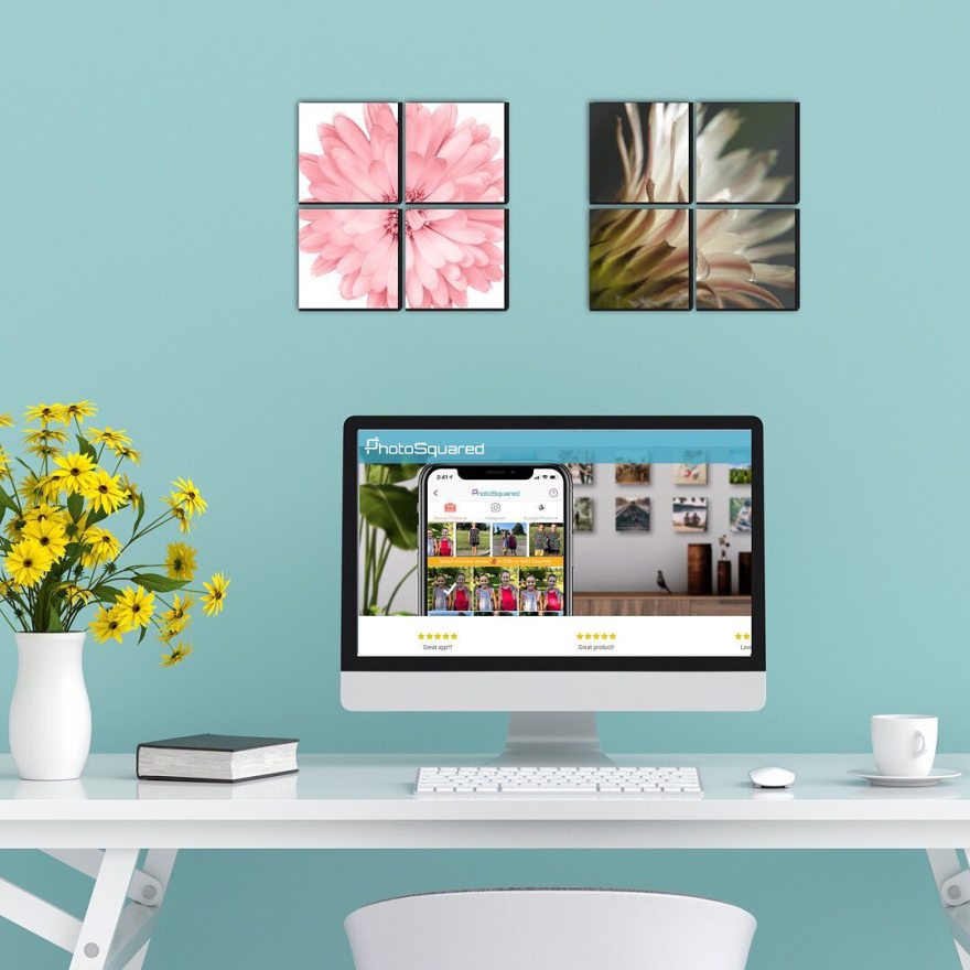 Mixtiles VS Photosquared: Features & Pricing