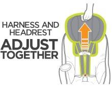 Harness and Headrest Adjust Together