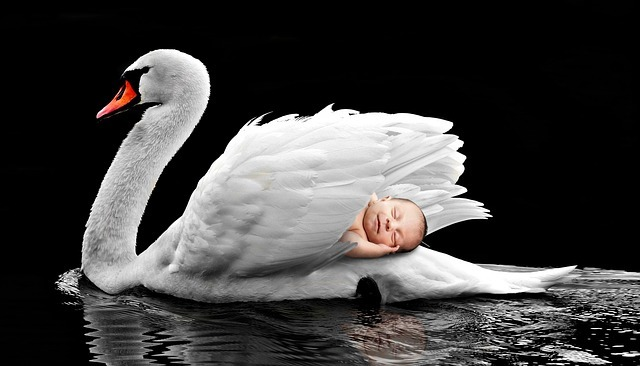 sleeping baby with bird