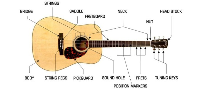 Parts Of An Acoustic Guitar Head Stock Tuning Keys And What Are Included