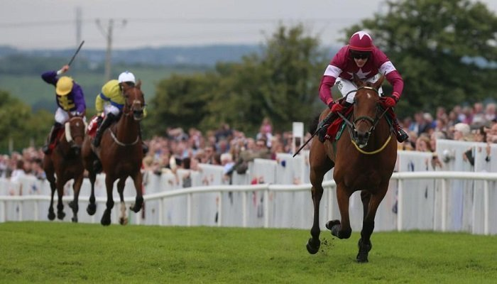 Ante Poste Betting on the Galway Plate 1