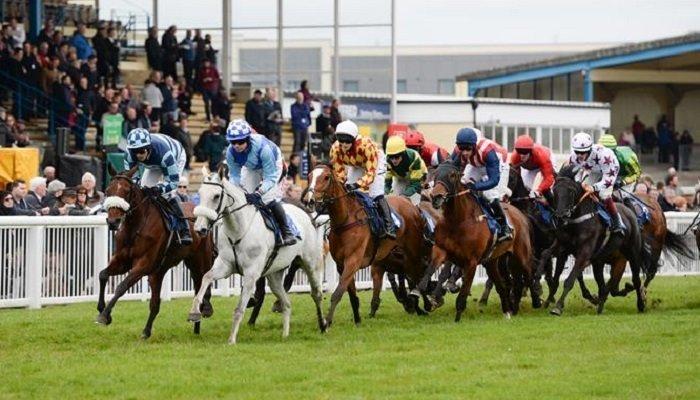 Newton Abbot Racecourse Stats 1