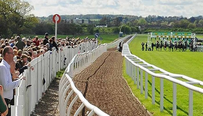 Wetherby Racecourse Stats