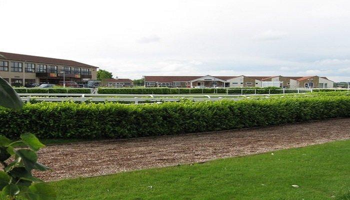 Wincanton Racecourse Stats