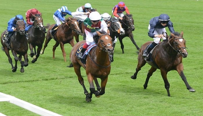 St. James's Palace Stakes 1