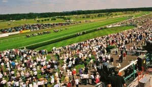 Betway Summer Plate Handicap Chase Tips 6