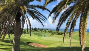 Punters Taking Their Chances on The Bermuda Championship 16