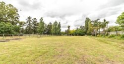 Smallholding with Professional Dressage Area