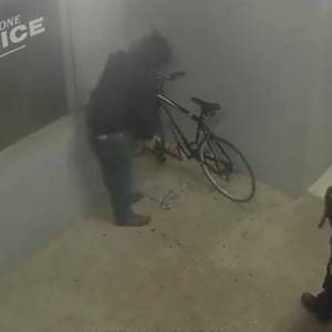 Officer catches 'dumb' suspected bike thief red-handed outside Oregon police station - National